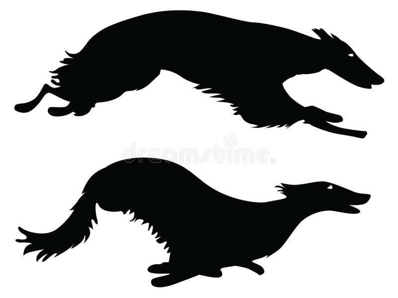 Working dogs. Silhouettes running Russian Borzoi Dogs, working dogs vector illustration