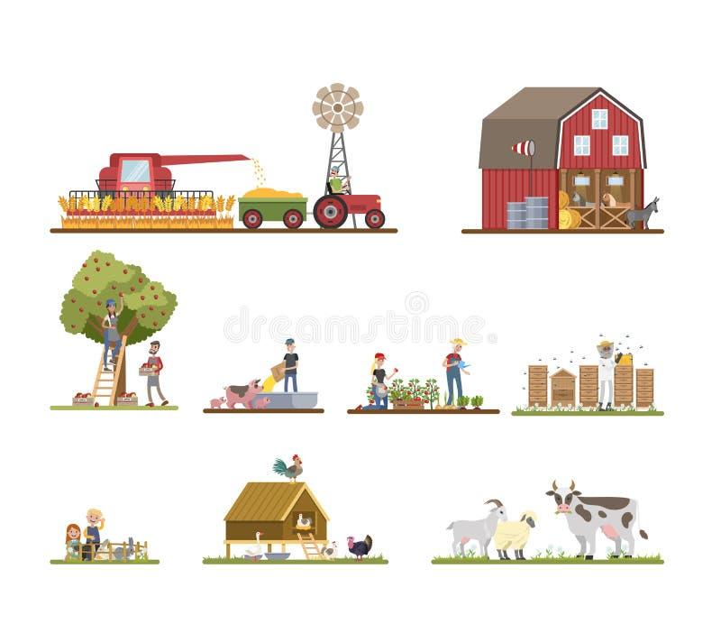 Working on farm set vector illustration