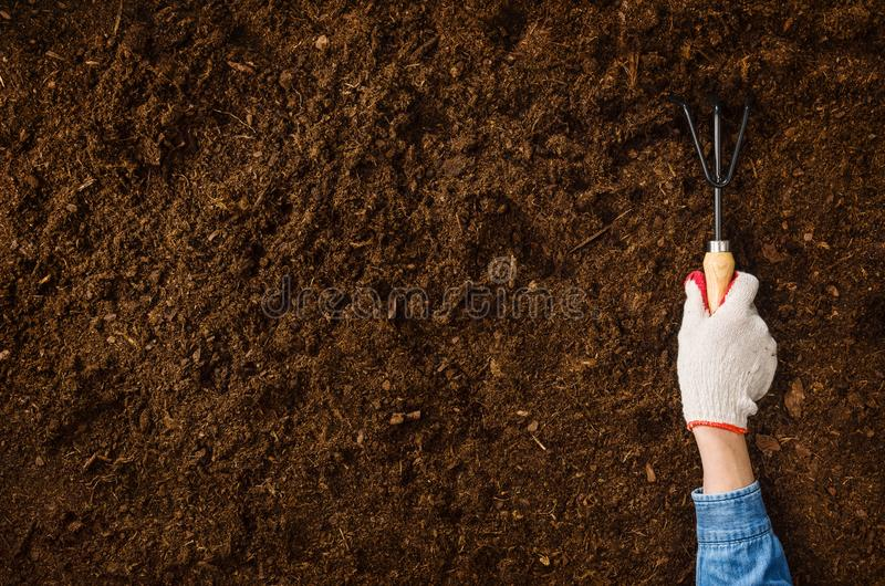 Working in the garden, planting a plant. Soil top view. Woman hand planting a plant on a natural, soil backgroud. Camera from above, top view. Natural stock images