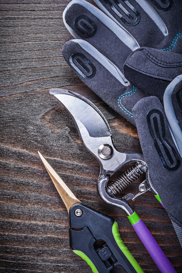 Working gloves garden shears pruner on wooden board.  stock photography