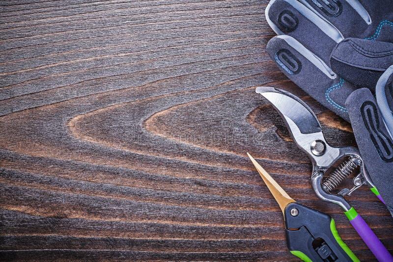 Working gloves metal garden shears pruner on wooden board.  stock image