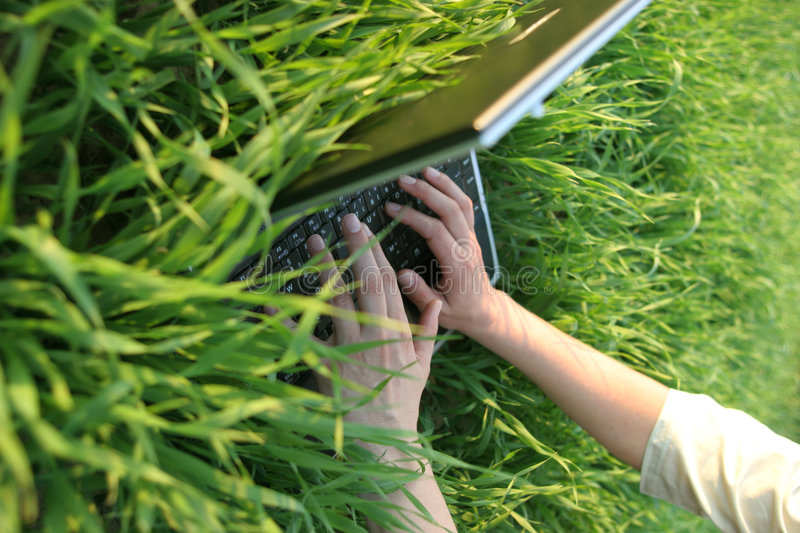 Working in the grass. Female hands working with a laptop in the grass at sunset