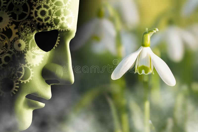 Working in harmony with nature misty concept. Working in harmony with nature concept. Mask face with mechanical cog brain looking onto a delicate snowdrop plant stock photography