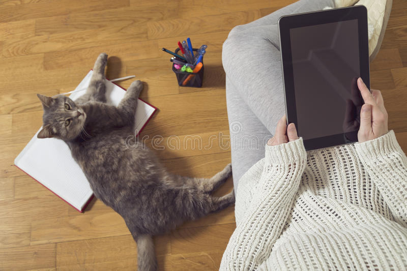 Working at home. Top view of a woman sitting on the floor, holding a tablet computer and working at home with cup of coffee, planner and a cat assistant stock photo