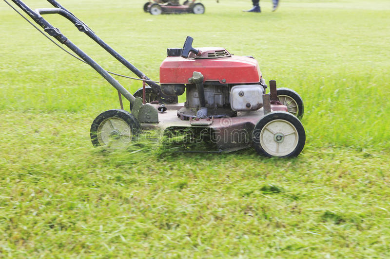 Working of lawn mover cutting grass leaves on garden field royalty free stock photography