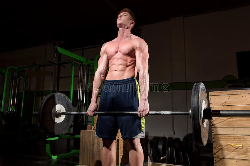 Working out hard in dramatic light. This is a dramatic image of a really strong man at a gym working out and exercising and showing off his muscles. The dramatic royalty free stock photography