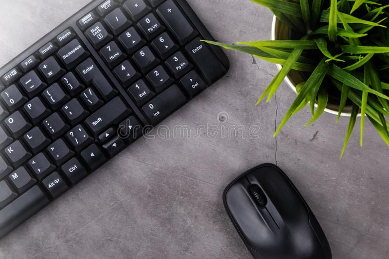 Working place on dark table with copy space. Table with keyboard, computer mouse, flower in pot. Flat lay. Top view, the sun`s. Rays from the side royalty free stock photography
