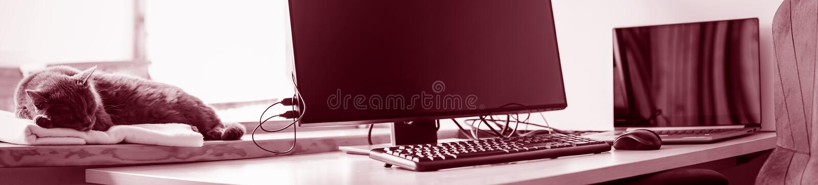 Working place with IT equipment at home is used as homebase office. Flexible hours and remote working concept, panorama royalty free stock images
