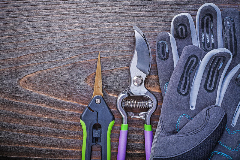 Working safety gloves garden shears secateurs on wooden board.  stock photography