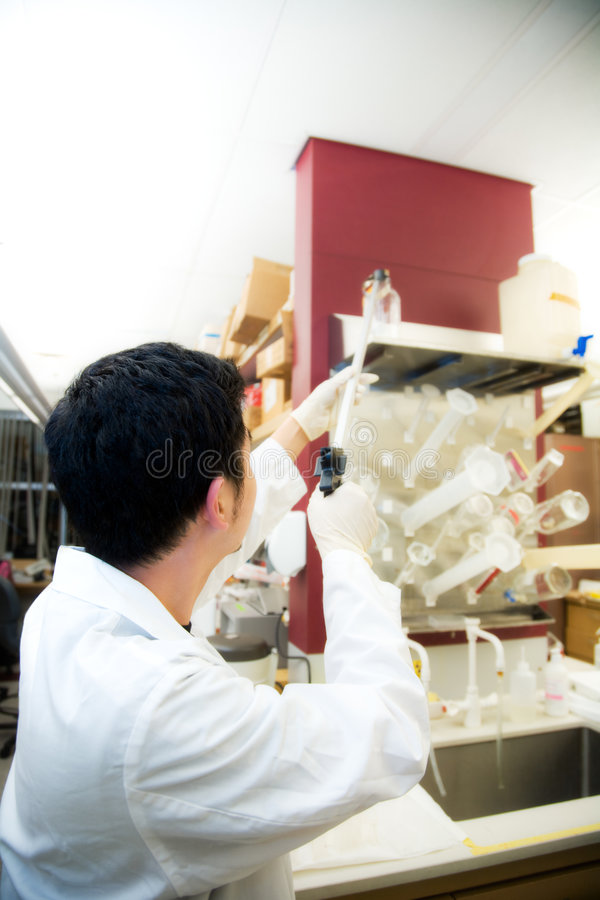 Download Working scientist stock photo. Image of professional, industry - 4081914