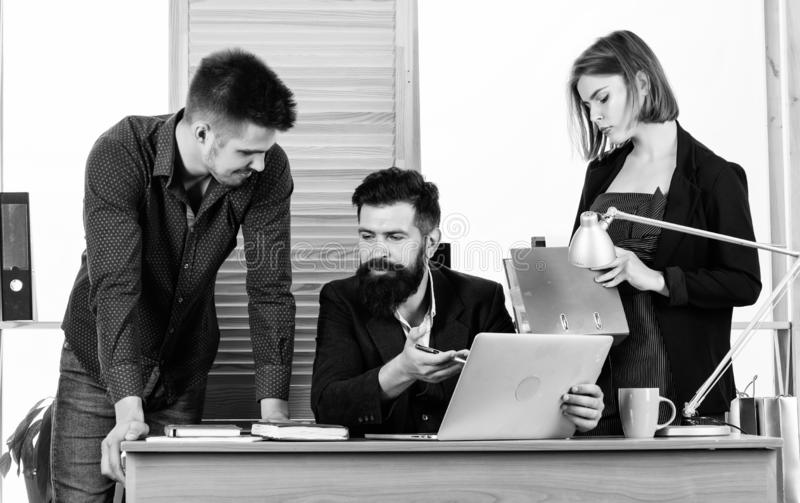 Working together. Working process. Business meeting. Female small minority. Woman attractive lady working with men stock images