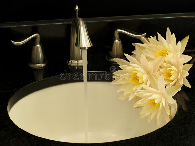 Download Working Water Mixer And A Few Water Lilies . Stock Photo - Image: 26589474