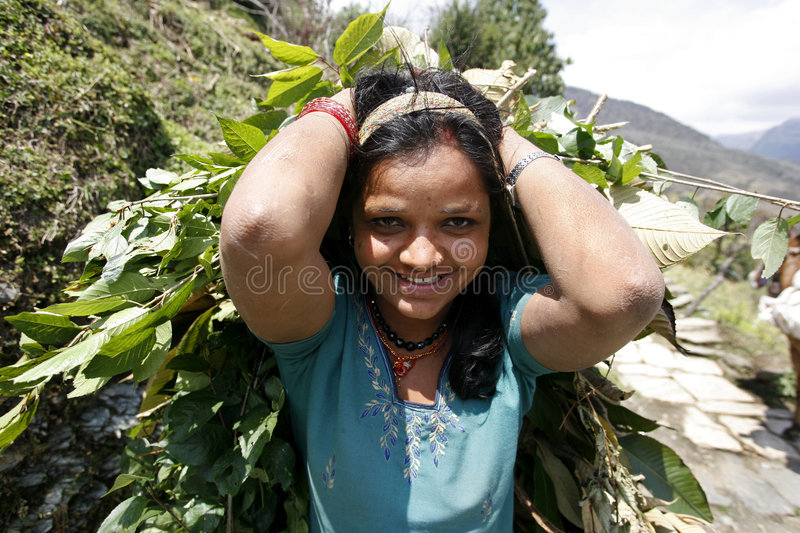 Download Working woman editorial stock image. Image of annapurna - 8703309