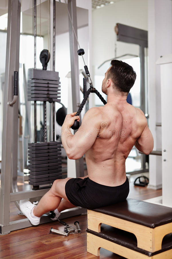 Download Workout at cable machine stock photo. Image of attractive - 39983188