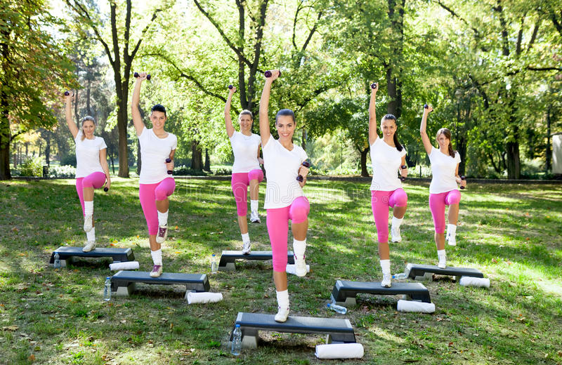 Download Workout group stock image. Image of sports, female, aerobic - 30944077