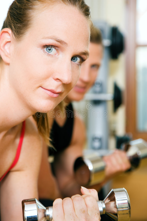 Download Workout in the gym stock photo. Image of athletic, body - 6404590