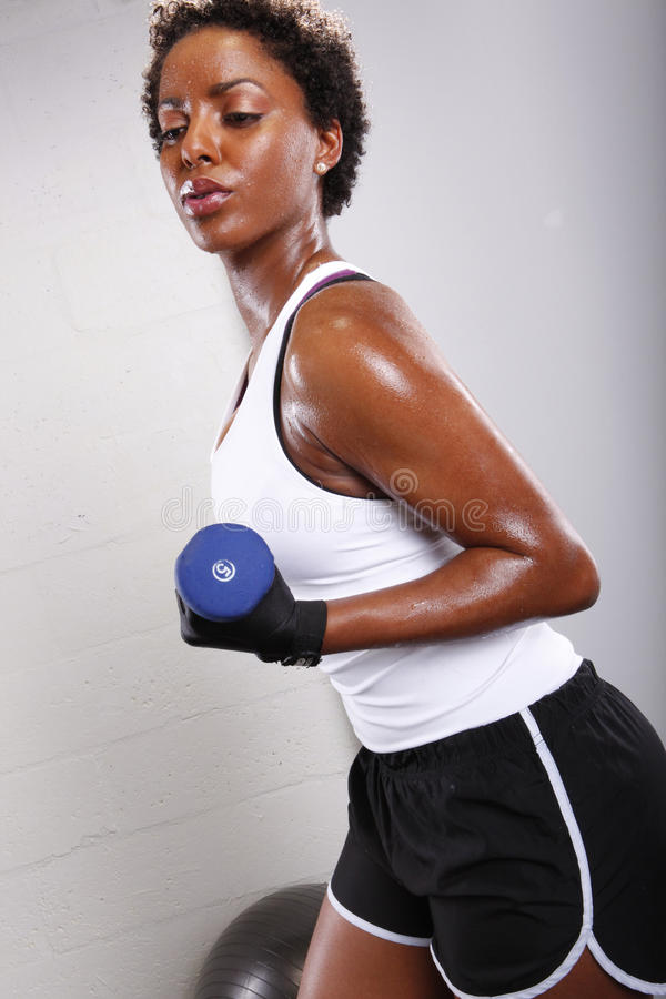 Download Workout Routine Stock Photos - Image: 13454993