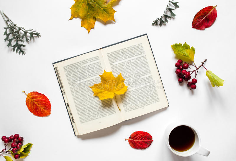 workspace Σύνθεση του βιβλίου με το φύλλο σφενδάμου, ένα τσάι φλυτζανιών, φύλλα φθινοπώρου, κόκκινα μούρα haw στο άσπρο υπόβαθρο στοκ εικόνες
