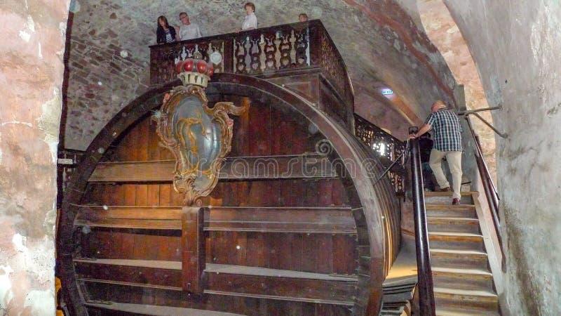 World's le plus grand baril de vin à Heidelberg, Allemagne photographie stock libre de droits