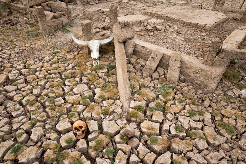 World crisis death skulls stock photos