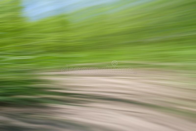 World environment green tree day concept. Abstract blurred trees texture sunset background stock image
