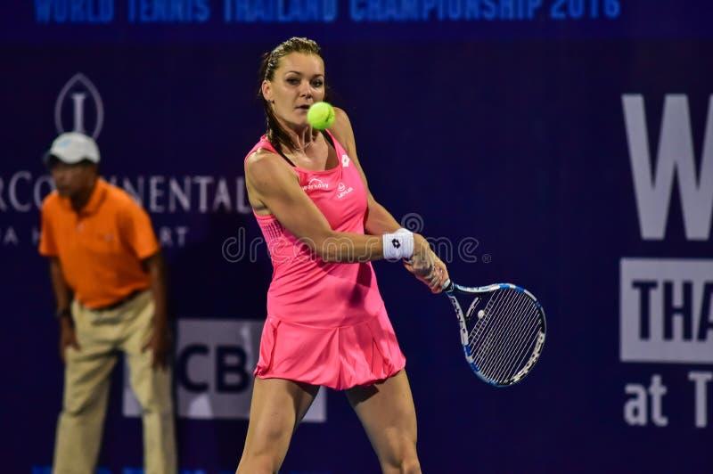 World female Tennis player Aginieszka Radwanska stock images