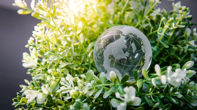 World globe crystal glass on green leaves bush. World globe cystal glass on green leaves bush. Environmental conservation. World environment day. Global business stock photos