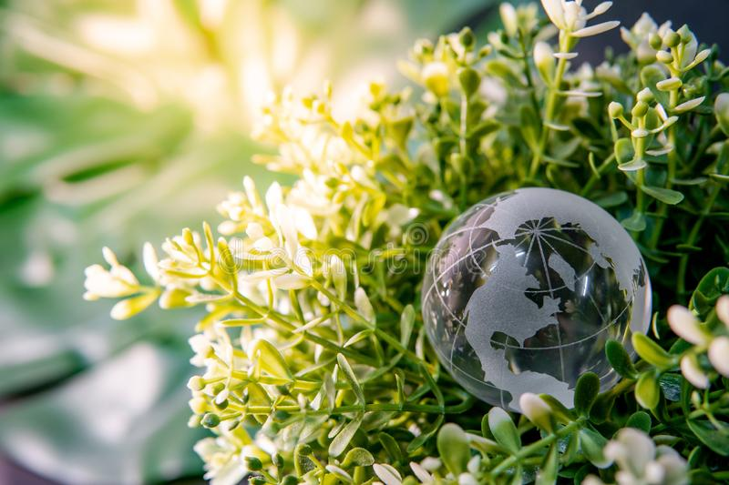 World globe crystal glass on green leaves bush. World globe cystal glass on green leaves bush. Environmental conservation. World environment day. Global business royalty free stock photography