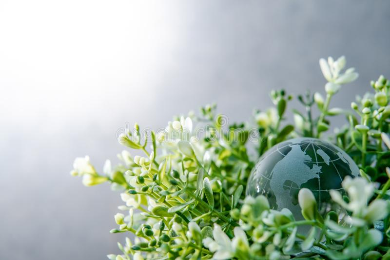 World globe crystal glass on green leaves bush. World globe cystal glass on green leaves bush. Environmental conservation. World environment day. Global business stock image