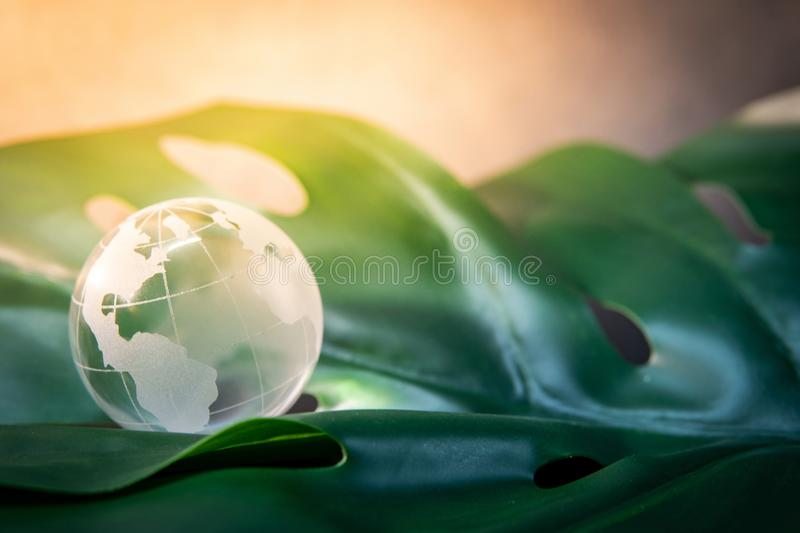 World globe cystal glass on green leaf. World globe cystal glass on green lush leaf. Environmental conservation. World environment day. Global business for royalty free stock images