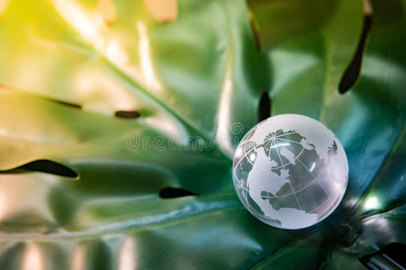 World globe cystal glass on green leaf. World globe cystal glass on green lush leaf. Environmental conservation. World environment day. Global business for stock image