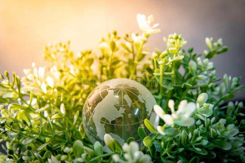 World globe cystal glass on green leaves bush. Environmental conservation. World environment day. Global business for sustainable development. Nature and stock photography