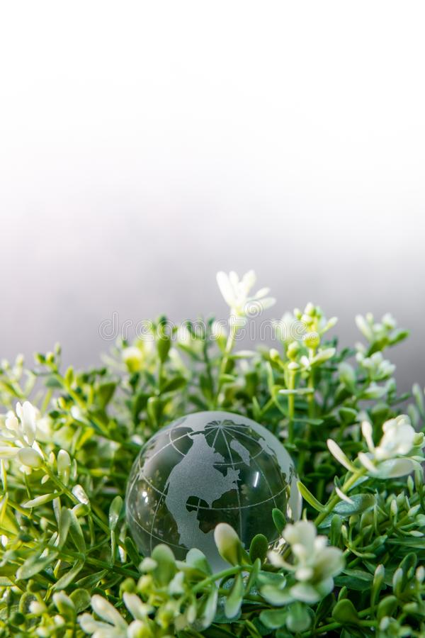 World globe cystal glass on green leaves bush. Environmental conservation. World environment day. Global business for sustainable development. Nature and royalty free stock photos