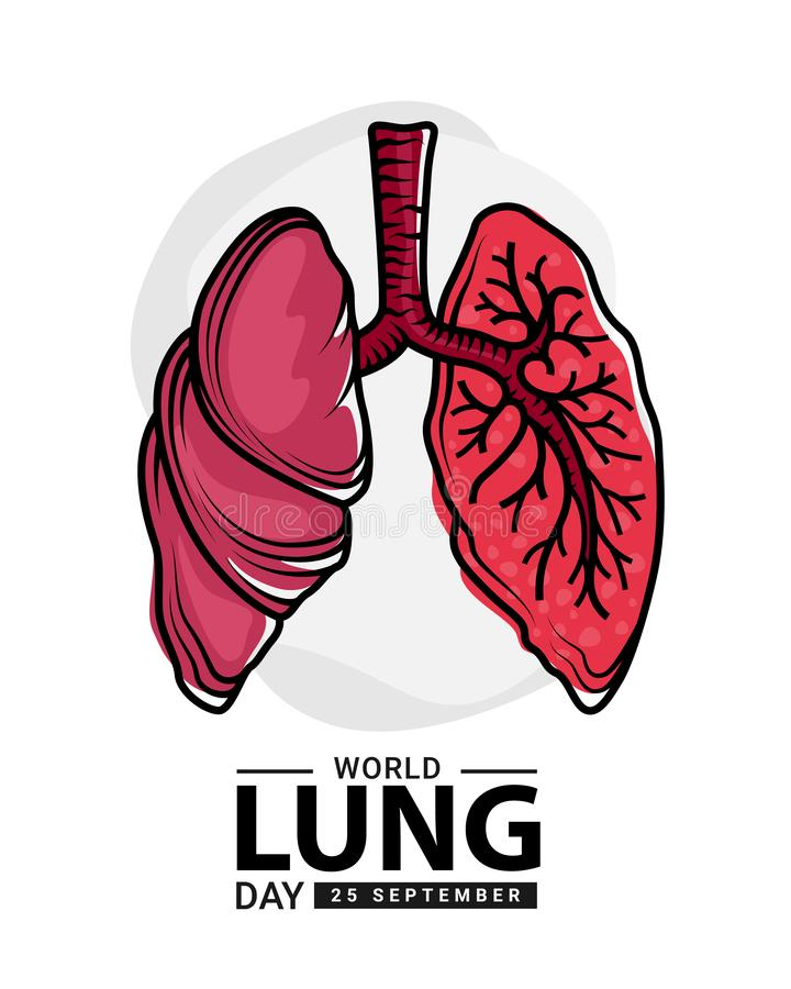 World heart day with red human lung  outline Drawing sign on white background vector design stock illustration
