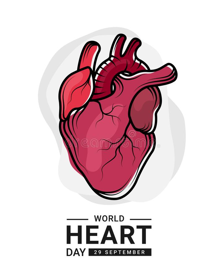 World heart day with red human heart Real and outline Drawing sign on white background vector design royalty free illustration
