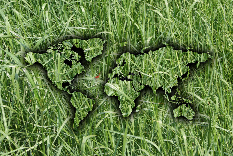 World Map On Grass. Shape of world map on grass background royalty free stock photo