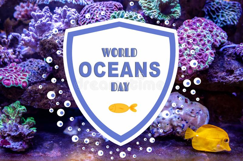 World Oceans Day. Photo and illustration with the inscription.  Underwater coral reef landscape stock illustration
