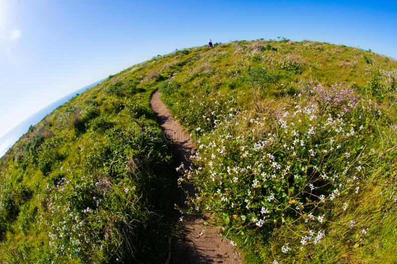The world is round hiking trail. Point Reyes, United States - March 03, 2012 : A truely special place where the San Andreas vault line cuts in the North american royalty free stock image