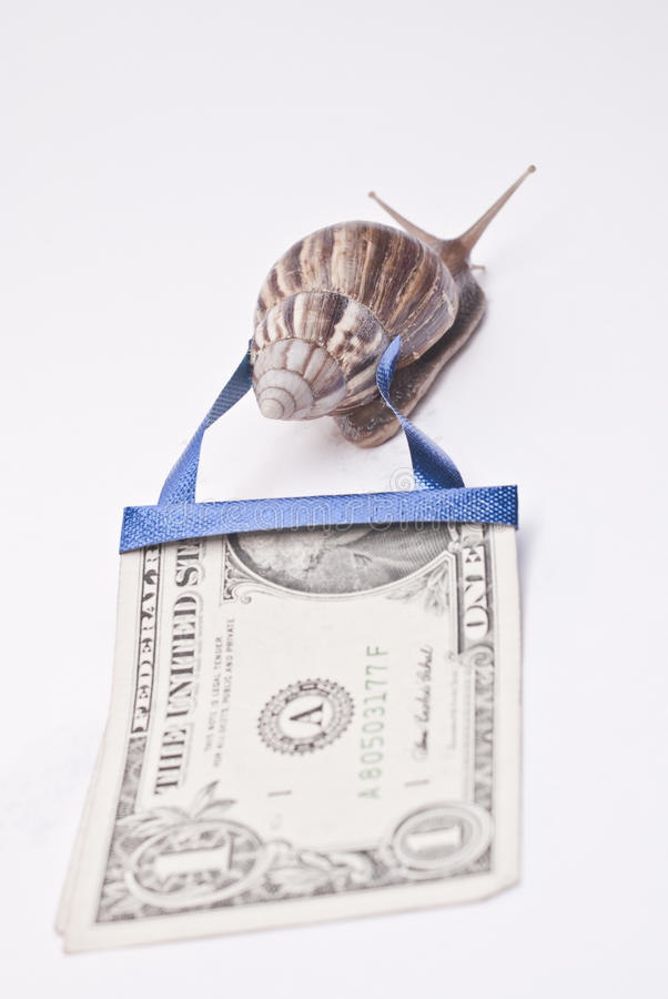 World's economic imbalance. Mr. Snail is willing To correct the world economic imbalance, he promised this process wont take so long royalty free stock images