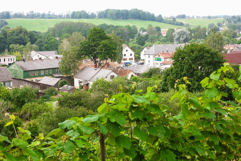 The world`s most northern vineyard in Europe stock image