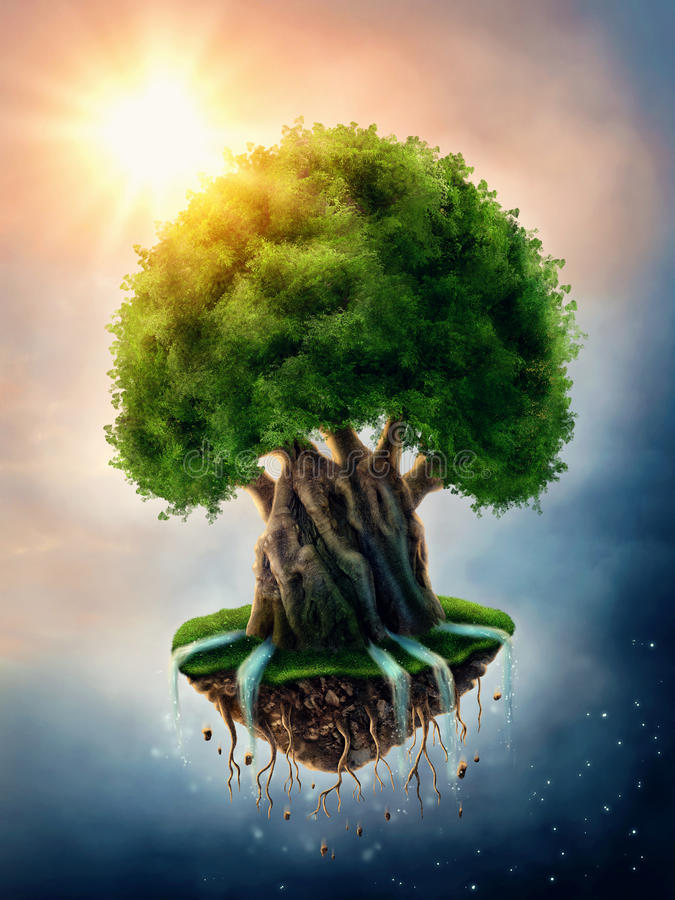 World tree stock image