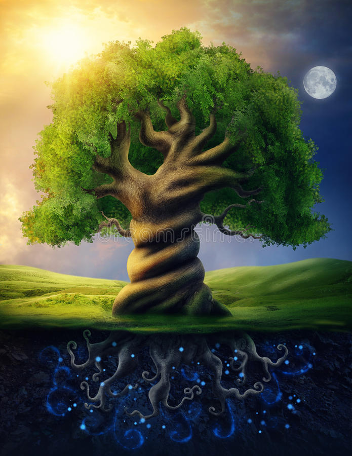 World tree. As incarnation of the universe as a whole royalty free illustration