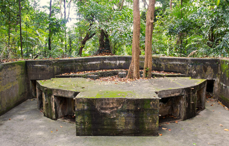 World War II Battery in the jungle in Singapore. World War 2 battery has been preserved, yet over time the jungle has reclaimed the land, including the concrete royalty free stock photography