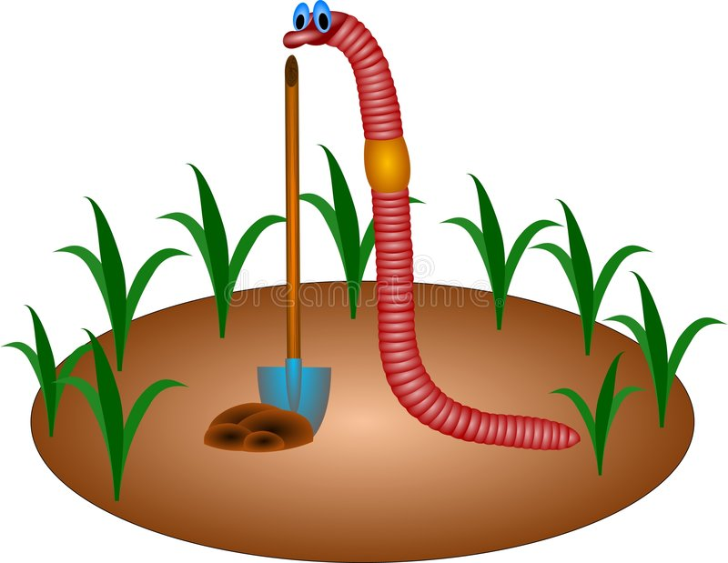 Download Worm stock illustration. Image of graphics, animals, worm - 1207140
