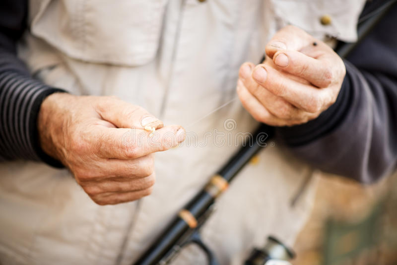 Worm on a fishing hook. Fisherman hooks a worm on a fishing hook royalty free stock photography