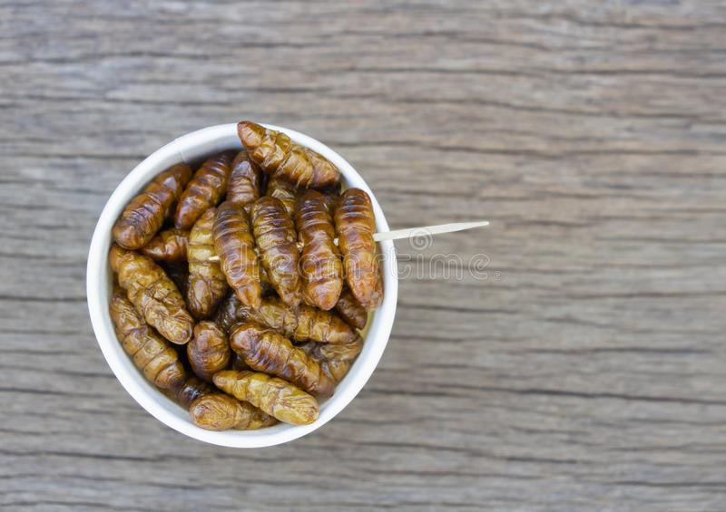 Worm insects or Chrysalis Silkworm in white paper cup on wood table. The concept of protein food sources from insects. It is a. Good source of protein, vitamin royalty free stock image