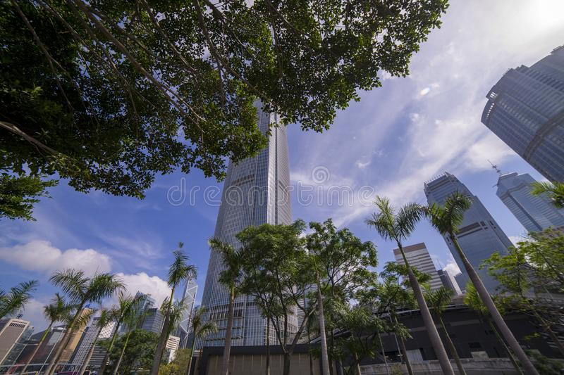 Worm's Eye View of Buildings and Trees stock photo