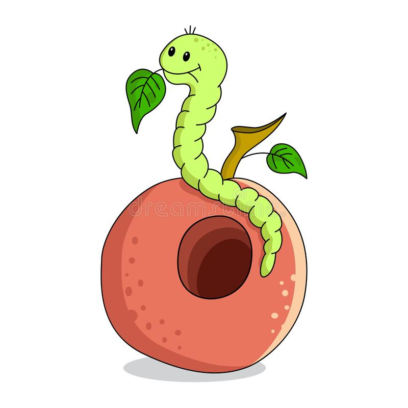 A worm sits on an apple and eats leaves. stock image