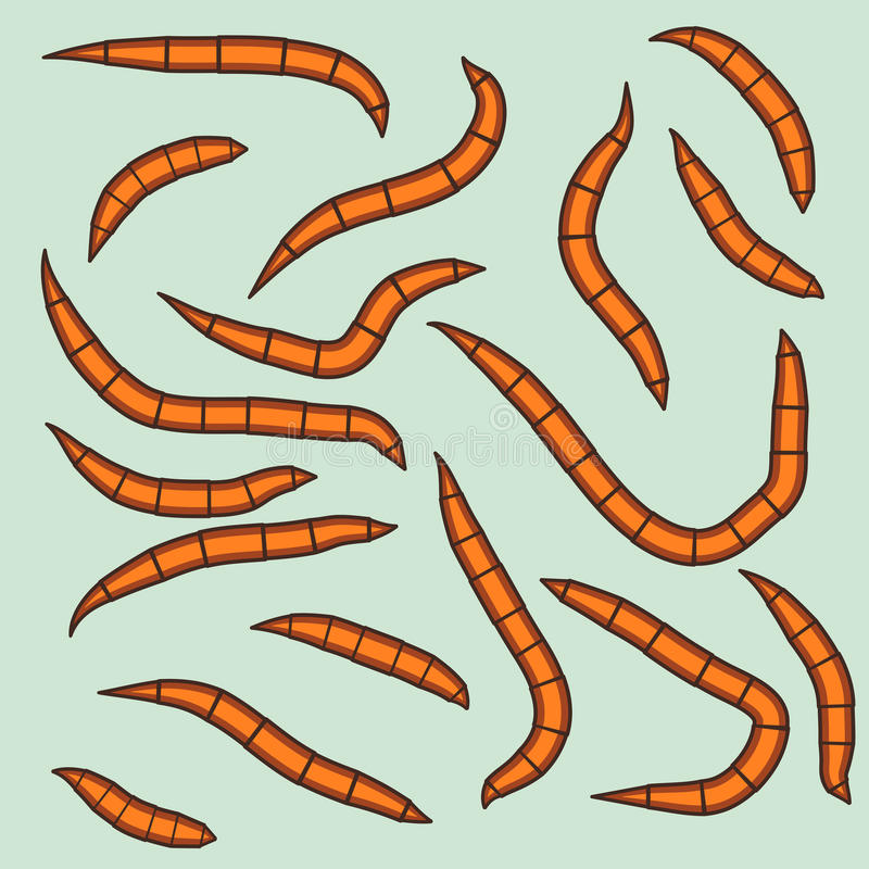 wormen stock illustratie