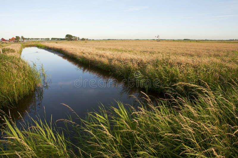Wormer- en Jisperveld, Holandia; Wormer- en Jisperveld, sieć obraz stock